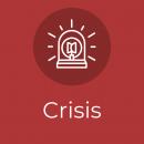 Crisis 2 (1)